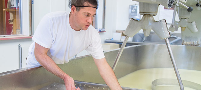 Ask The Cheesemaker
